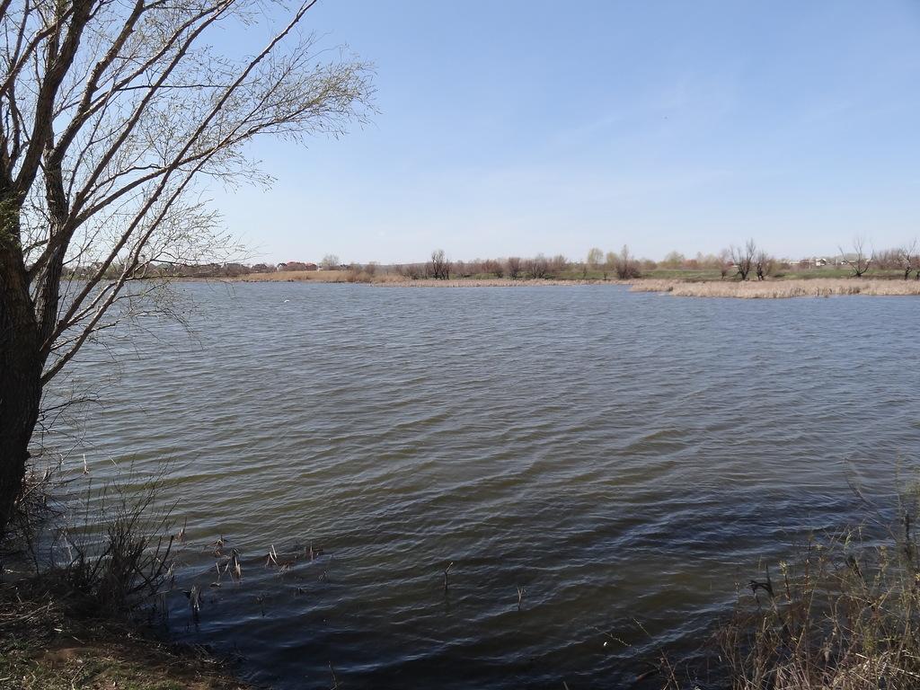 Подгорновское прудовое хозяйство