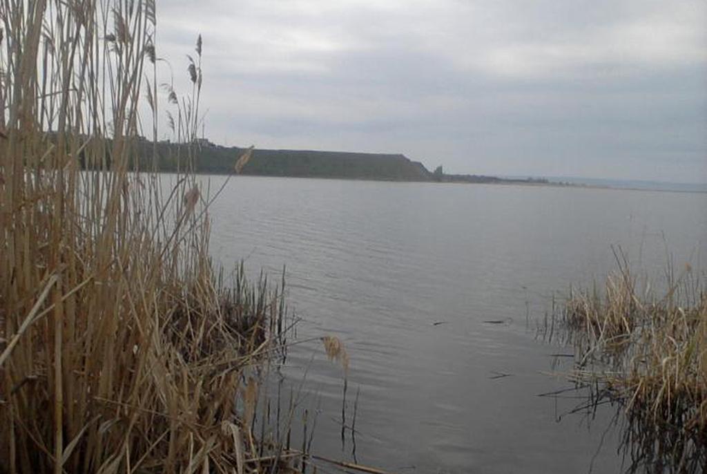 Тарлыковский залив