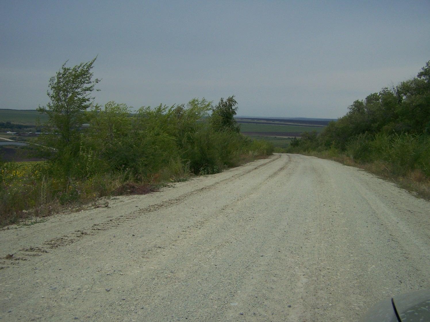 Анютинский лес