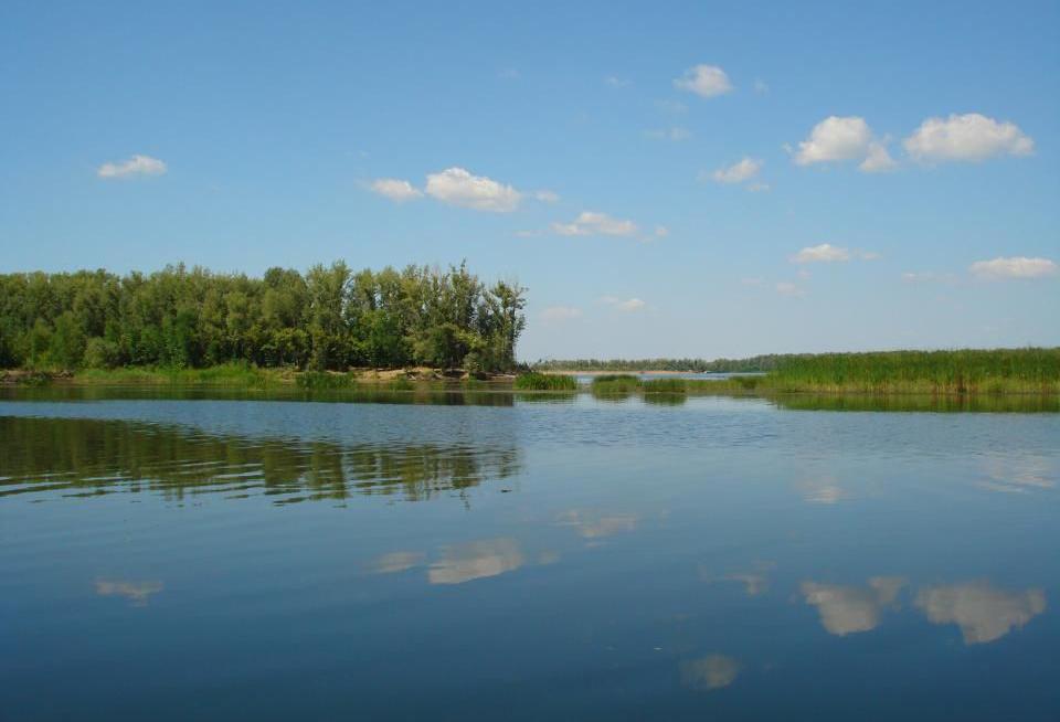 Леса Старого Карамана