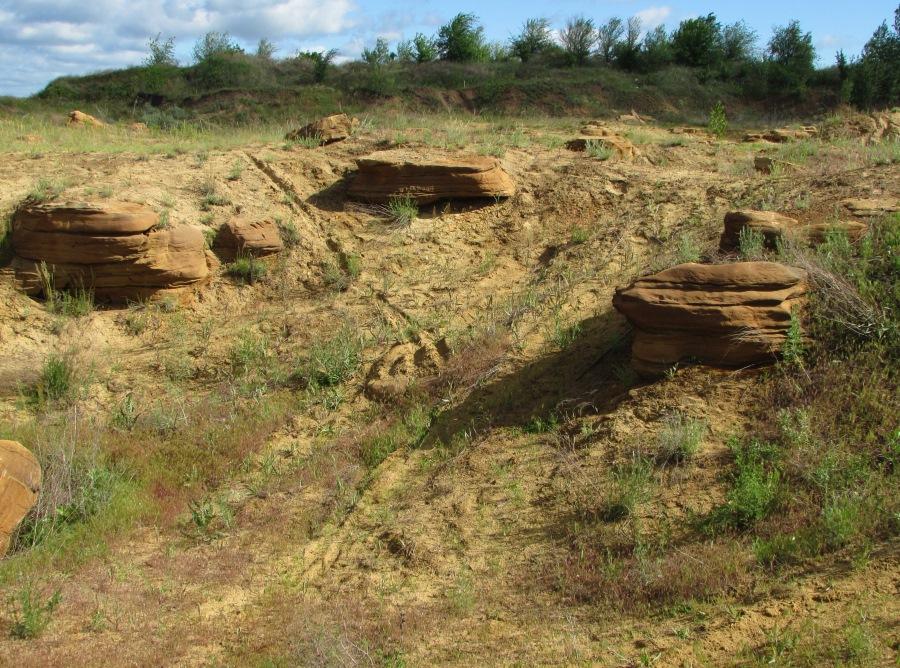 Песчаный карьер у Докторовки