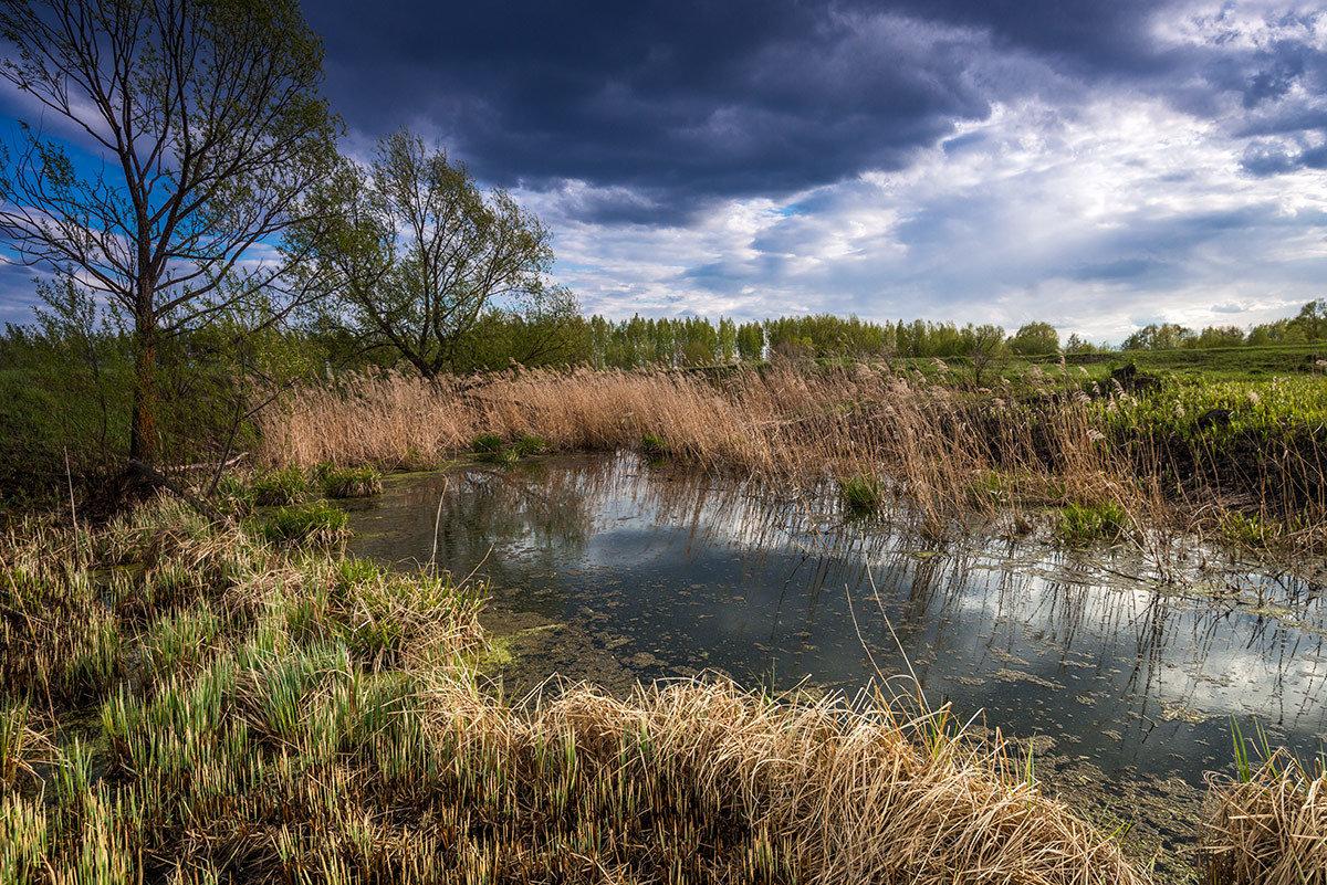 Пойменные озера под Марксом