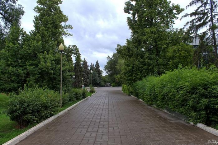 Сквер им. О.И. Янковского