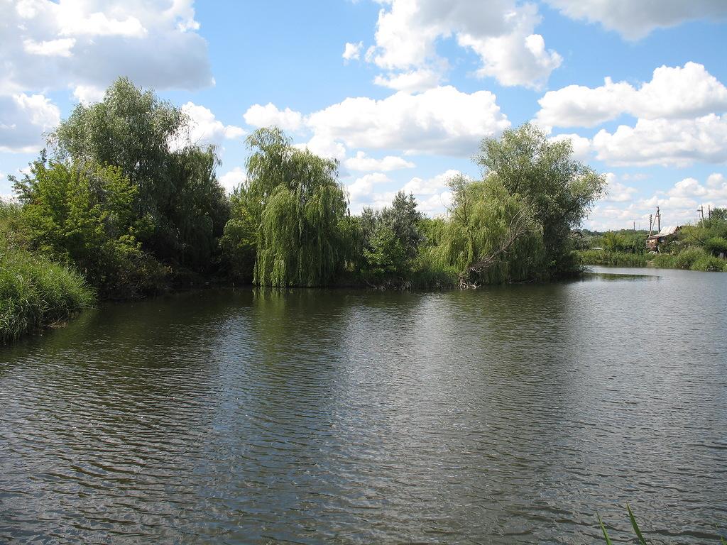 Река Елшанка