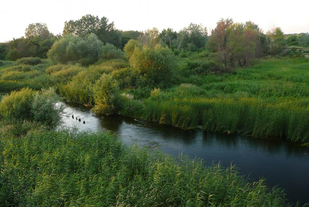 Река Идолга