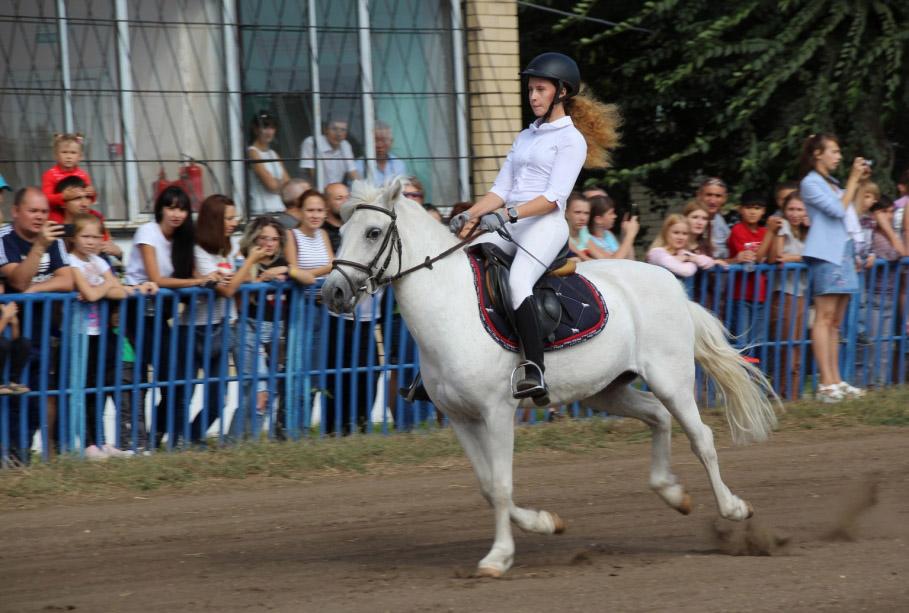 Кубок Губернатора Саратовской области по конному спорту