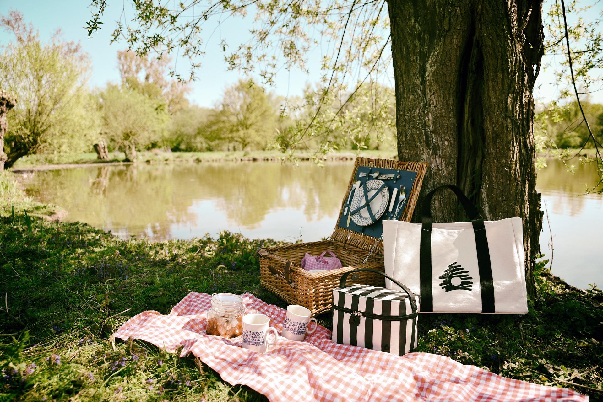 40 лучших мест для отдыха на природе и пикников около Саратова
