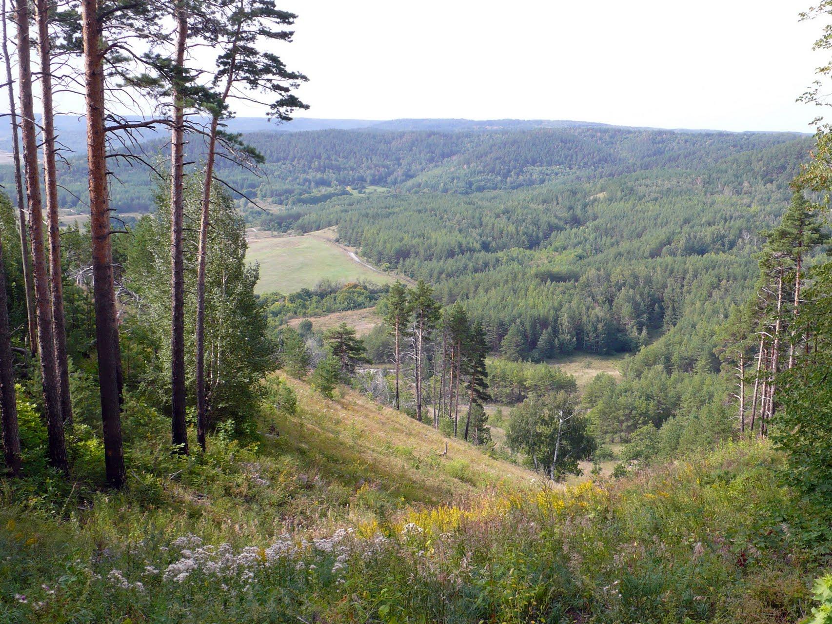50 уникальных и самых красивых памятников природы Саратовской