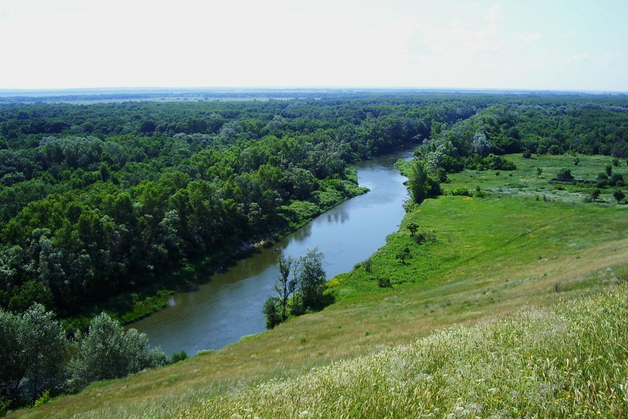 Реки и ручьи Саратовской области