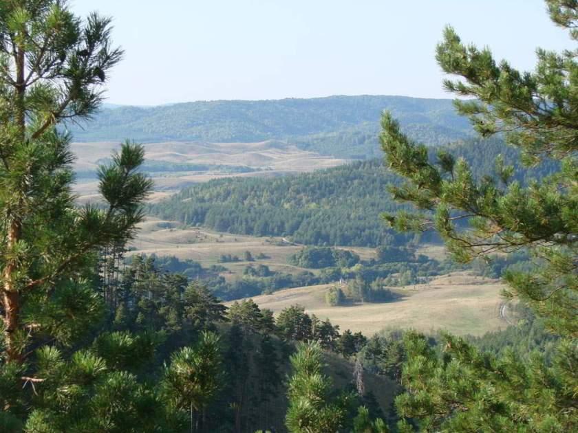 Самые красивые и интересные природные памятники Саратовской области