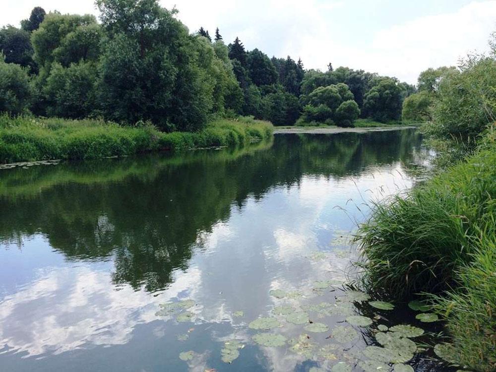 Река Лизель между Бобровкой и Павловкой