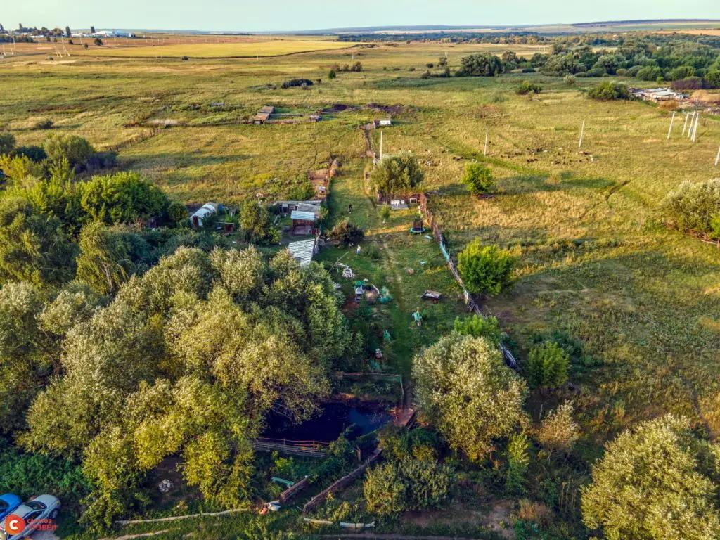 Частный мини-зоопарк Алексея Кулицкого