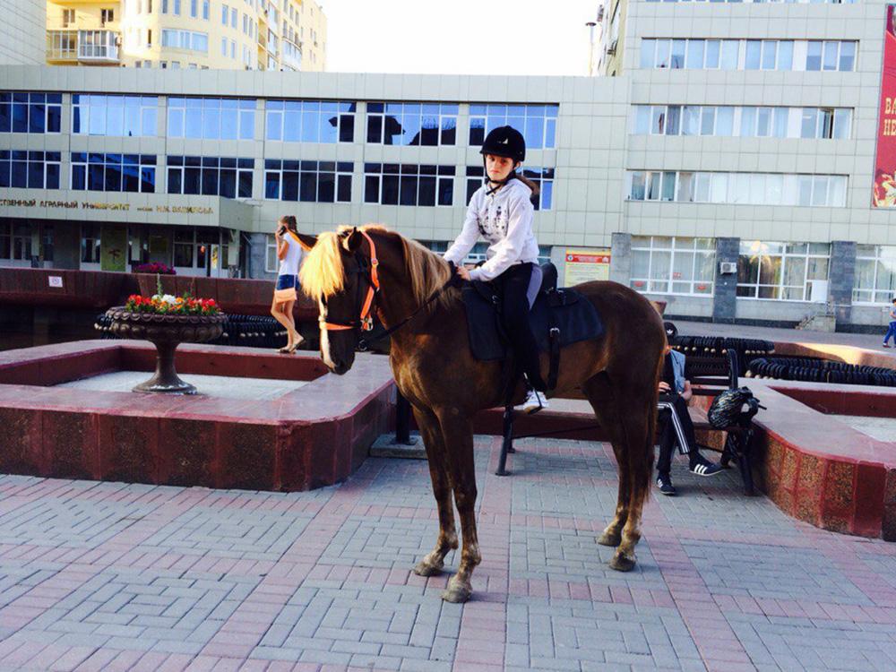 """Казачий конно - спортивный клуб """"Фортуна"""""""