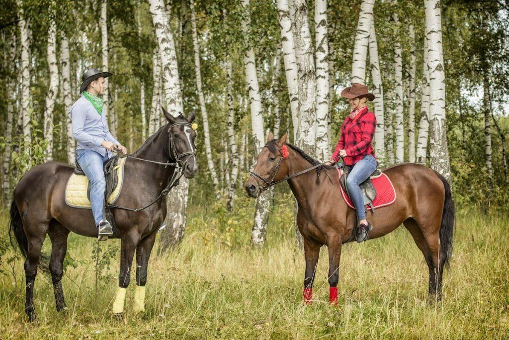 Конные прогулки и обучение верховой езде в Саратове