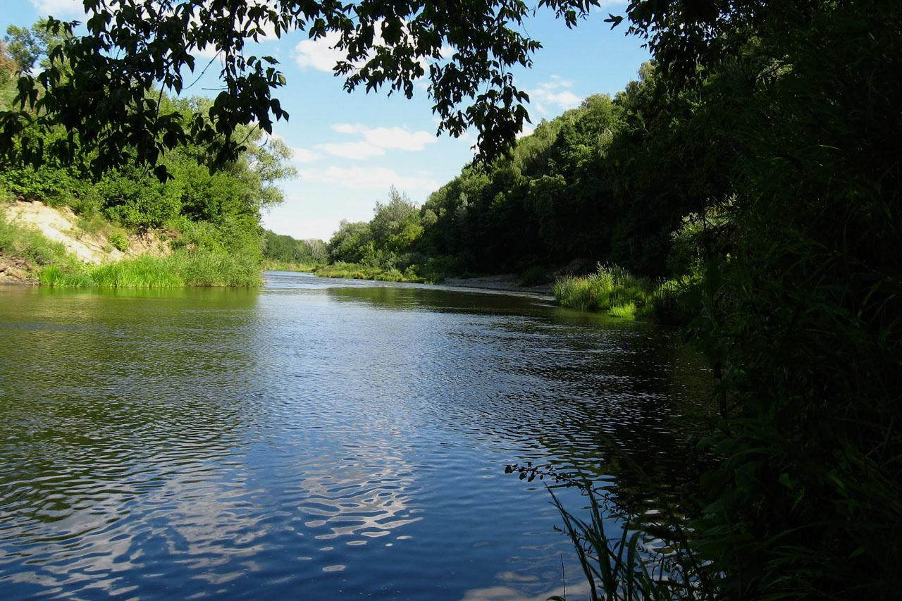 Аткарские места на реке Медведица