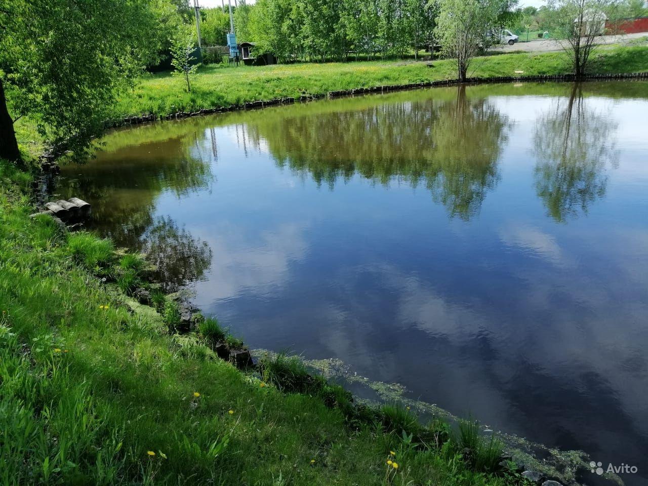 Беседка с мангалом и баня на пруду