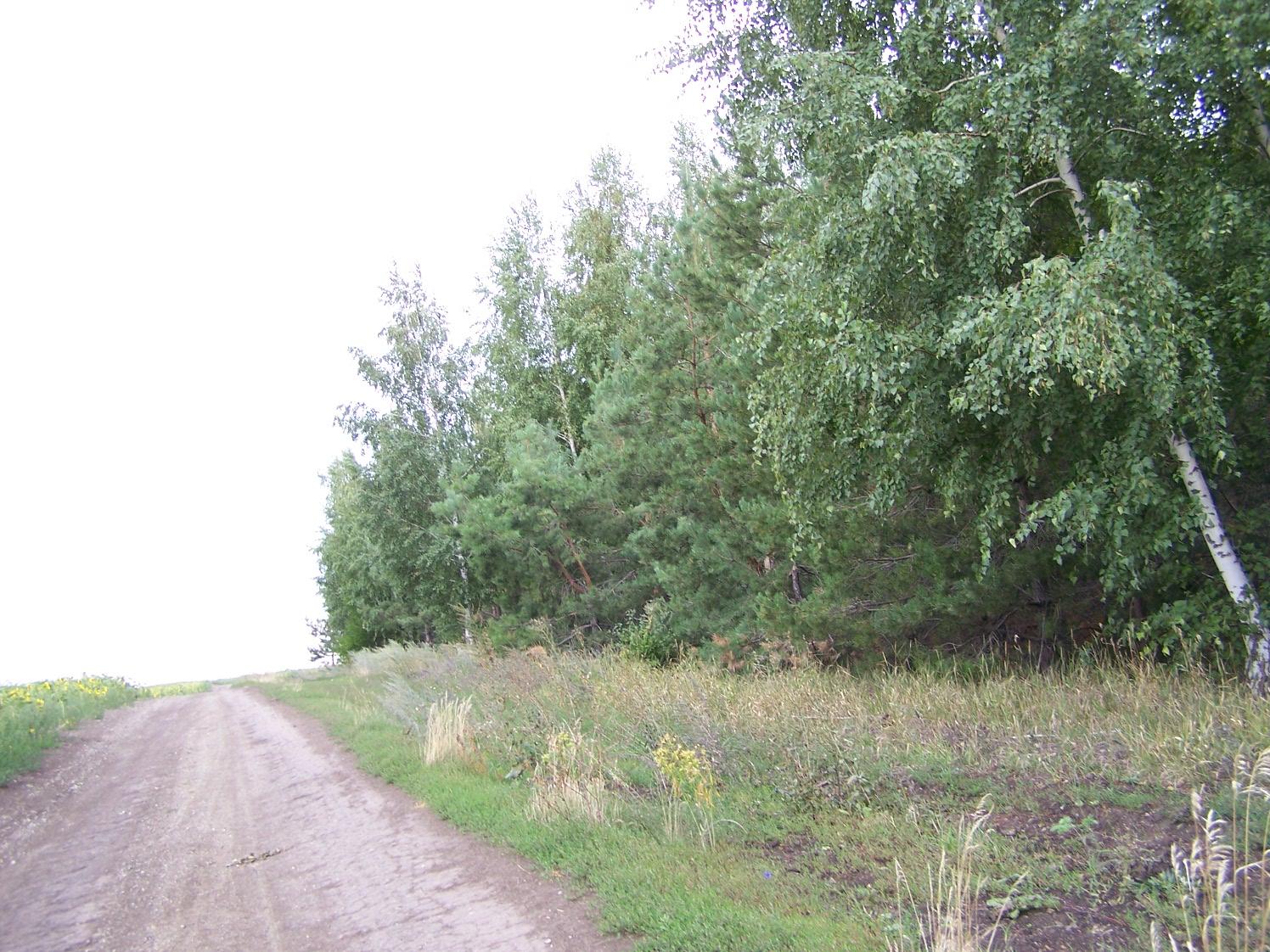 Черкасские леса