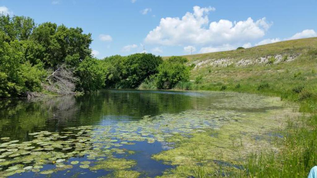 Место для рыбалки и отдыха на Карамыше