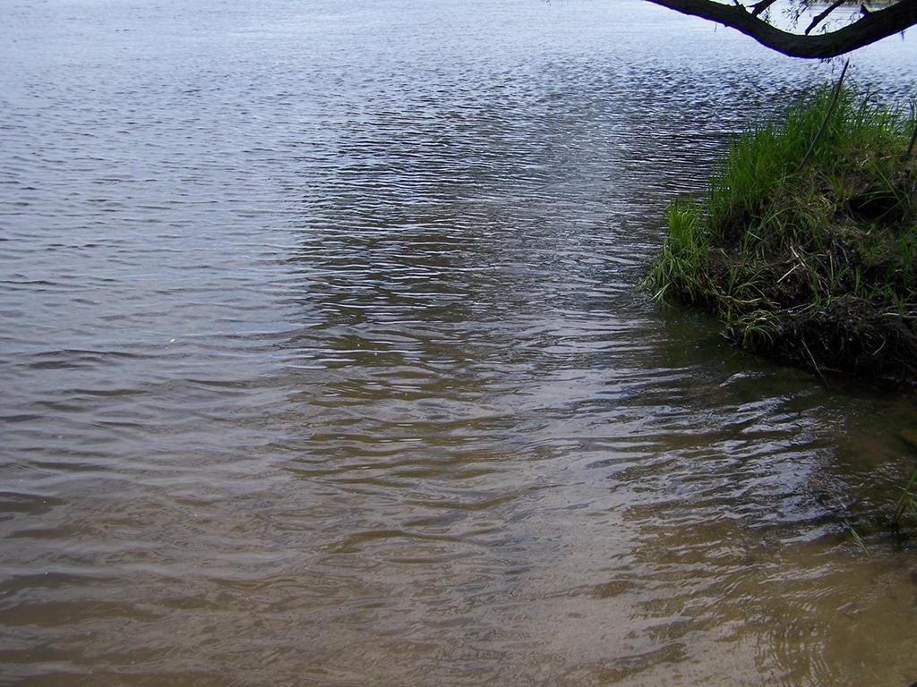 Дачный пляж у водонасосной станции