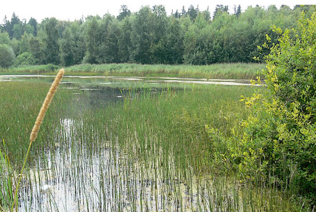 Озеро Мутное