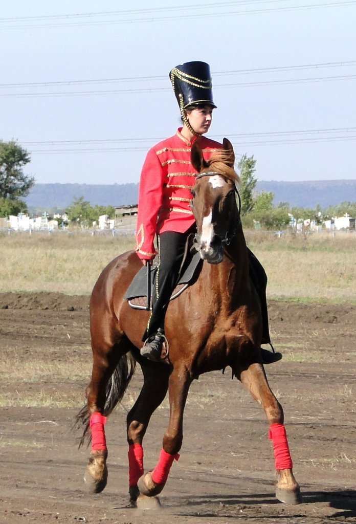 Натальинский конный клуб