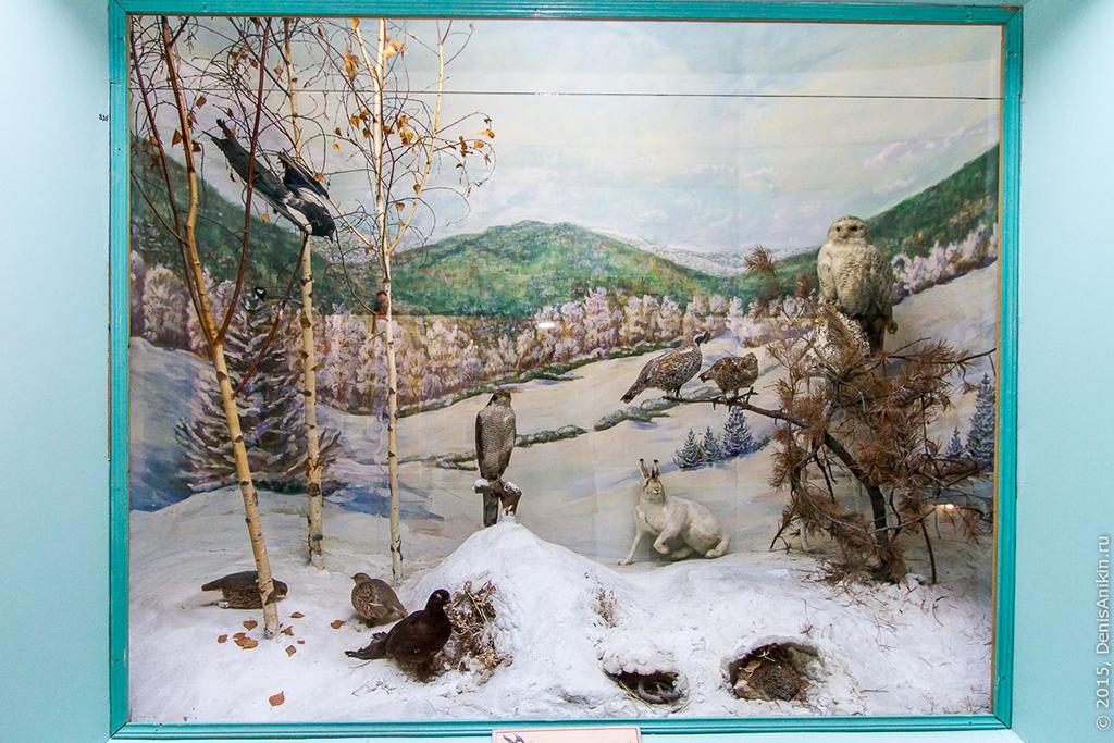 Хвалынский краеведческий музей, отдел природы