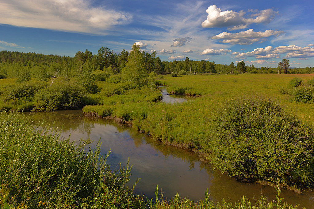 Река Щербедина