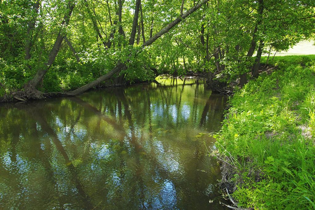Река Большой Колышлей
