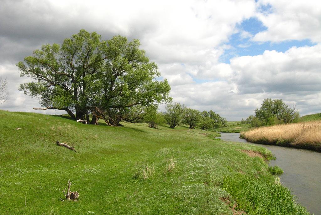 Река Аткара