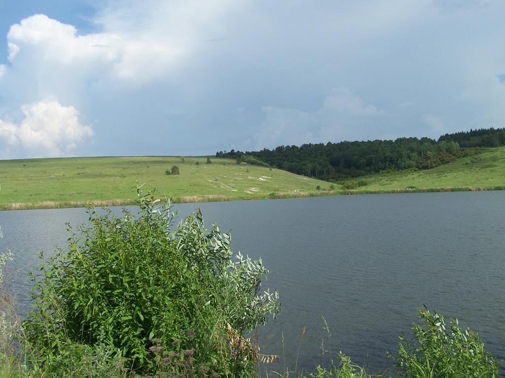 Пруд Сарайкино (Разбойничий пруд)