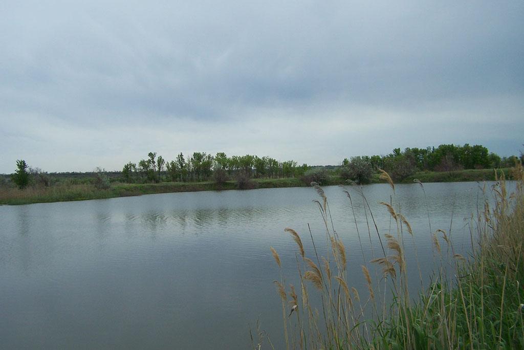 Старожуковский каскад прудов