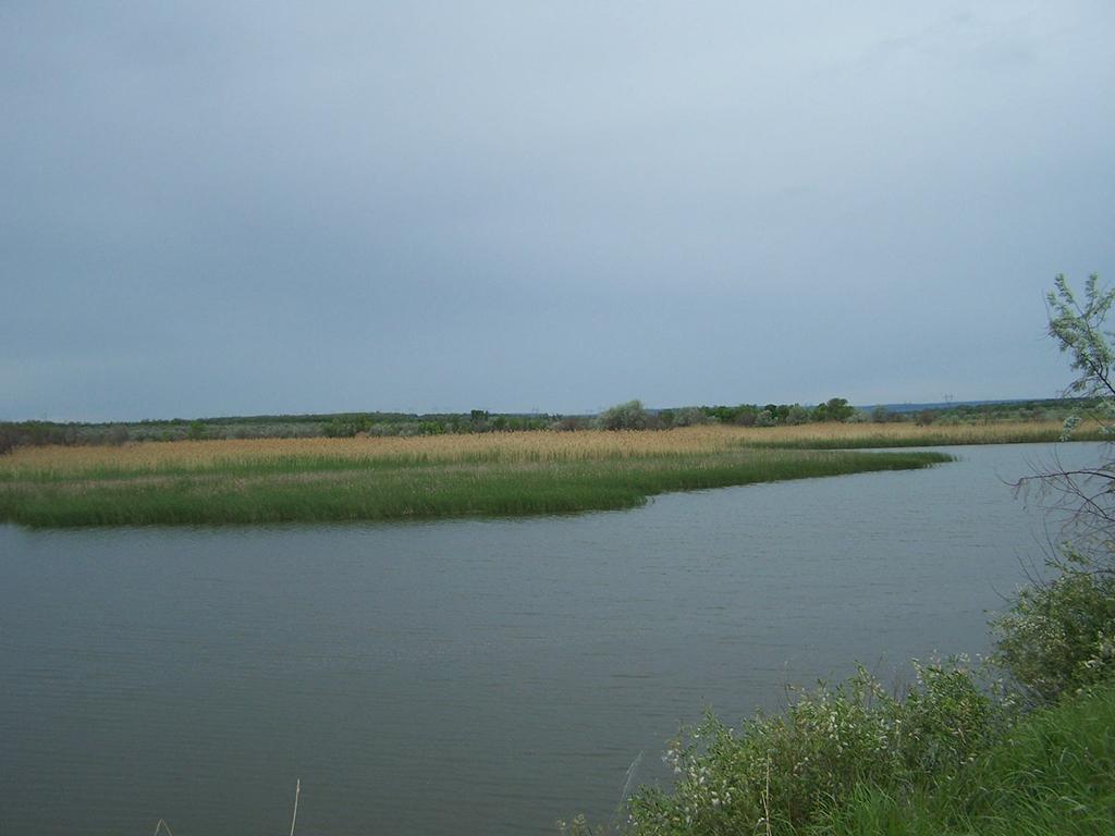Октябрьский пруд
