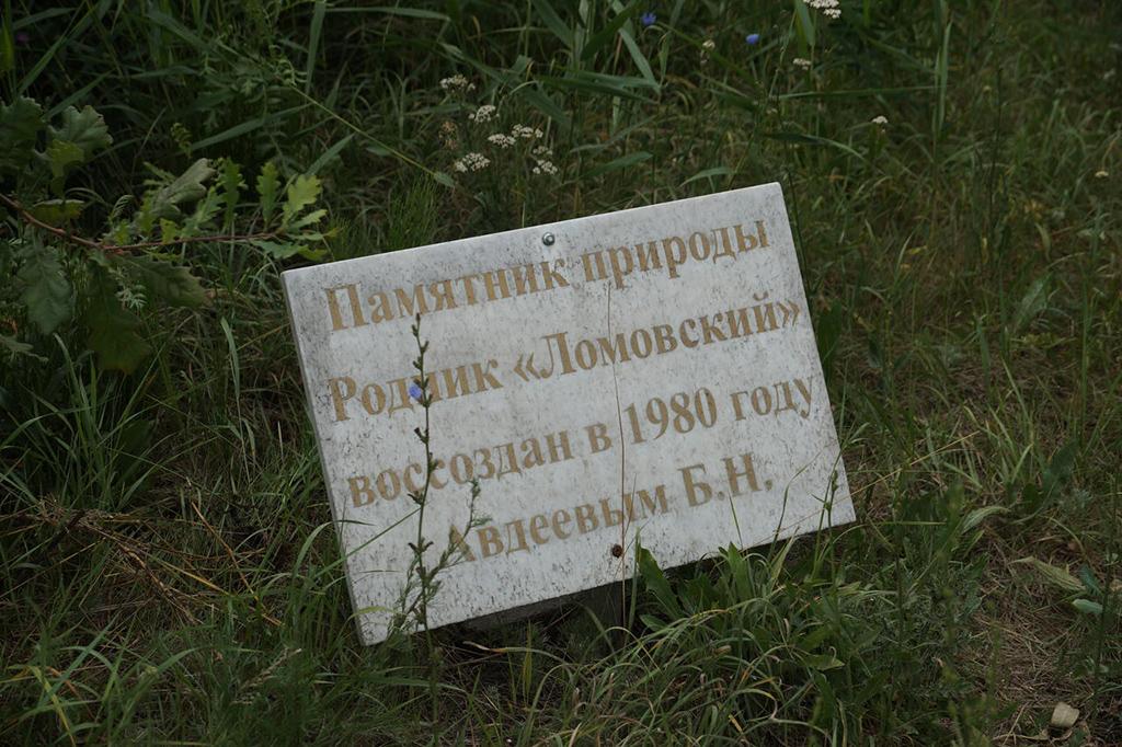 Родник Ломовский