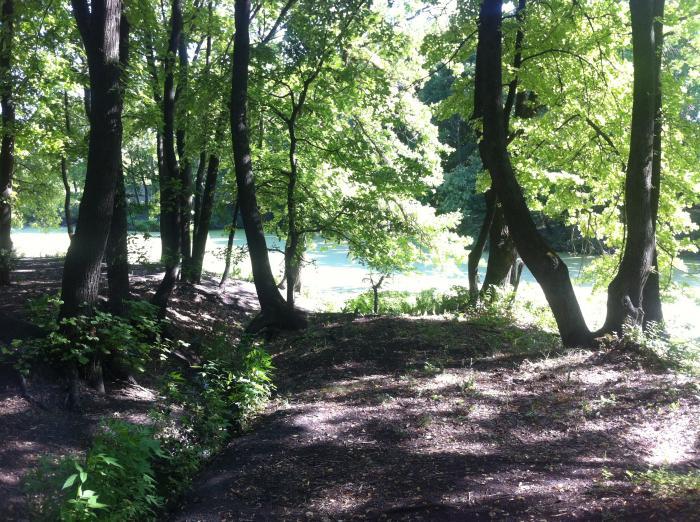 Пруды речки Назаровка и Березиной речки