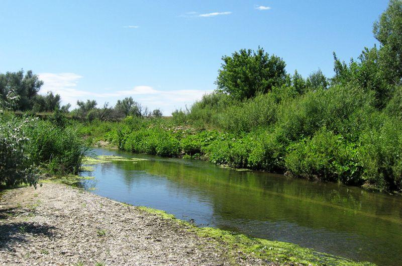 Река Чардым и река Сокурка