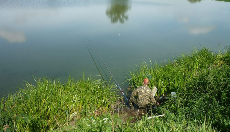 Гагаринский пруд