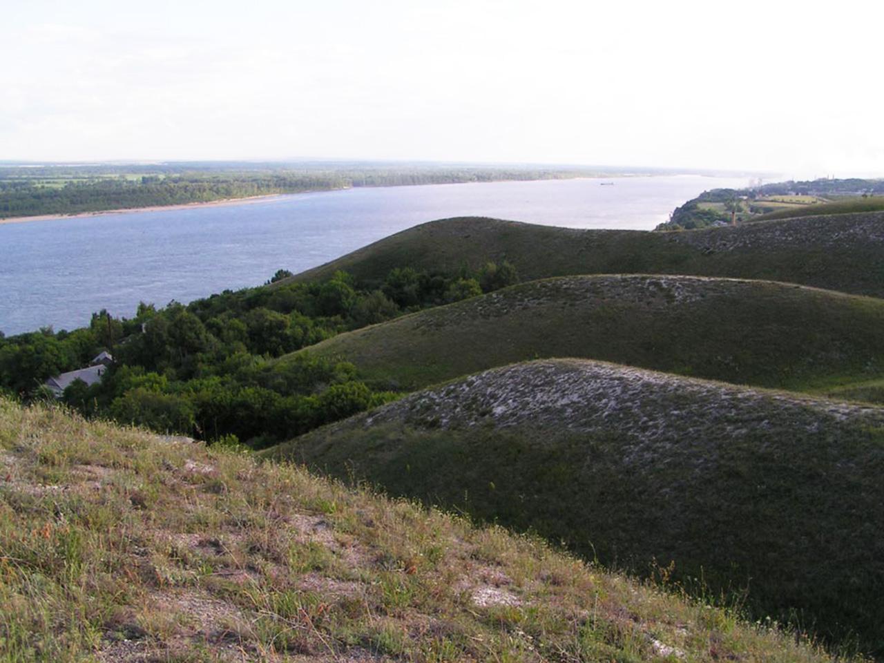 Меловые склоны с растениями-кальцефилами у г. Вольска