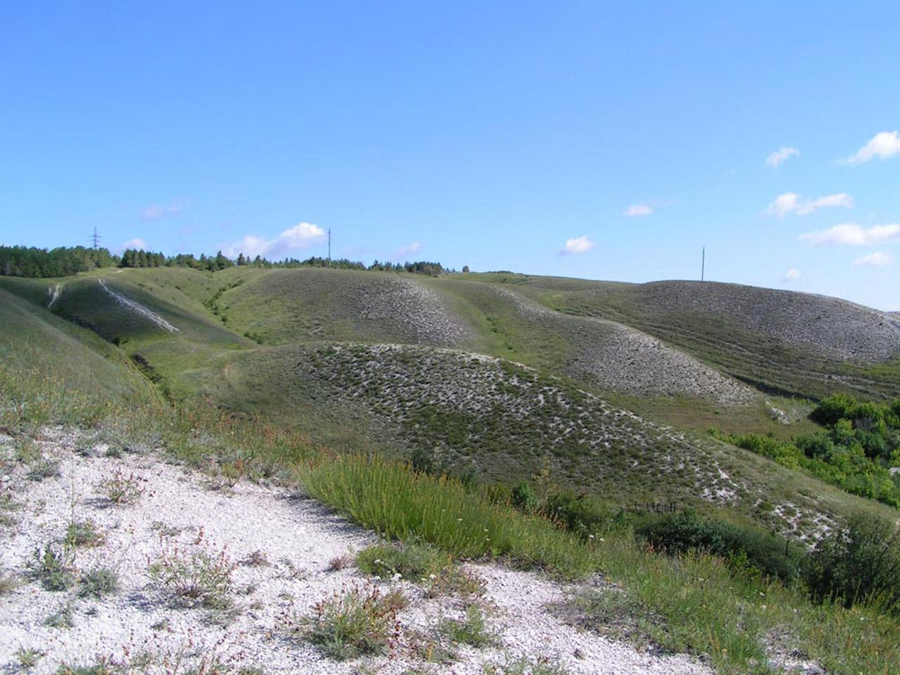 Меловые склоны с растениями-кальцефилами