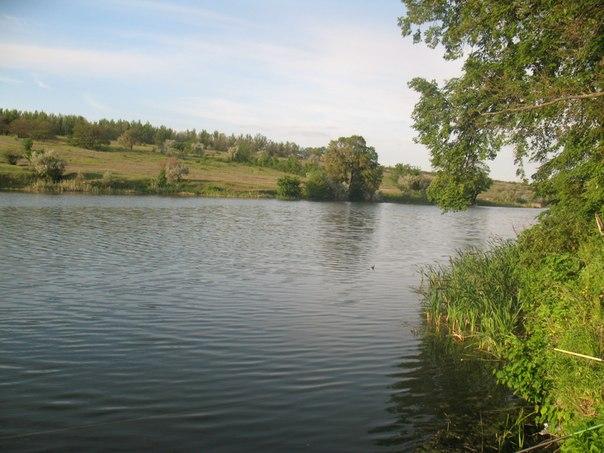 Водохранилище Колос