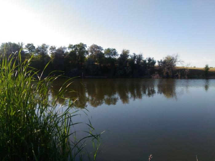 Устье реки Терновки и пруды
