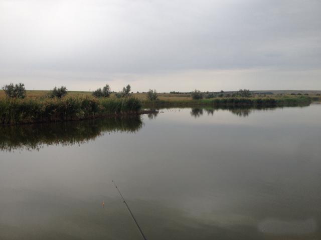 Пруд Пашкин