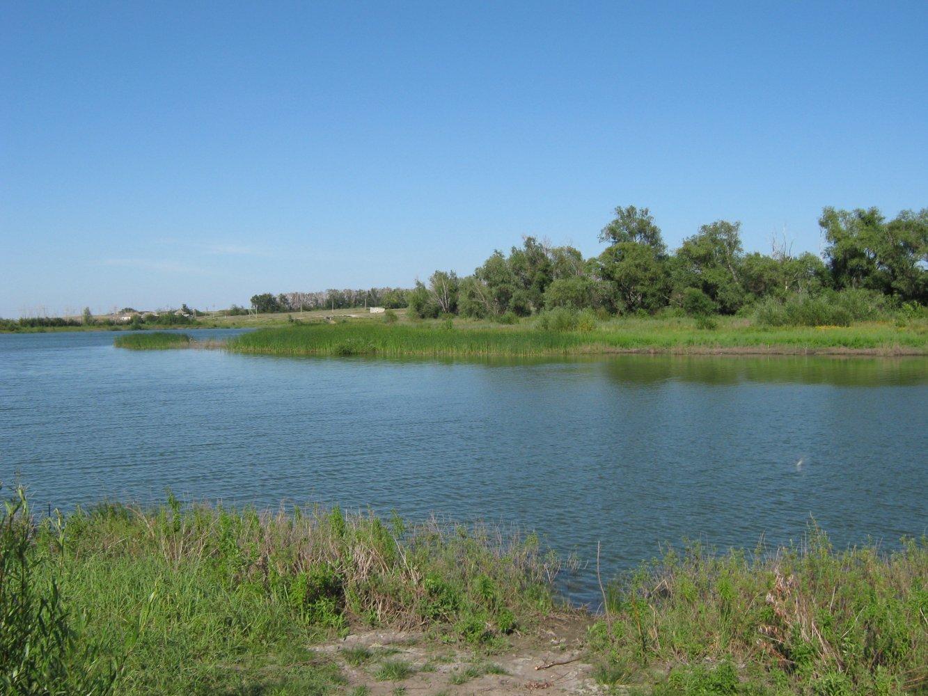 Пруд Озерки