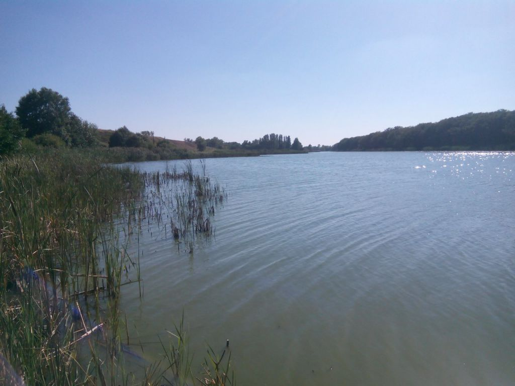 Кривопавловский пруд