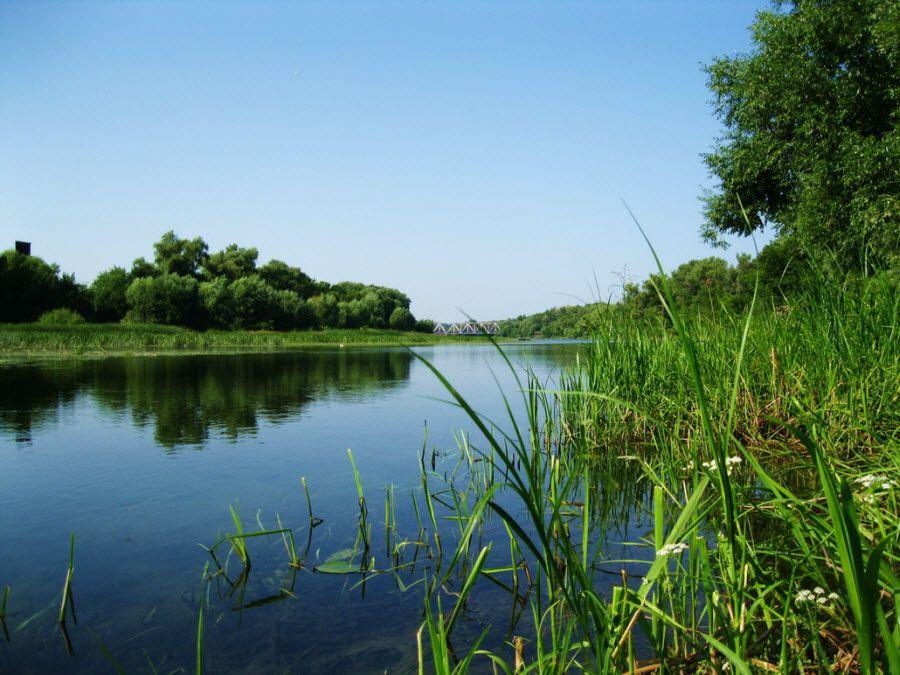 Озеро Золотое Дно