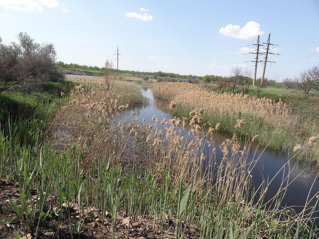 Река Мечётка