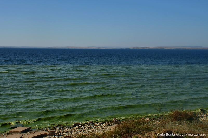 Ровенский берег
