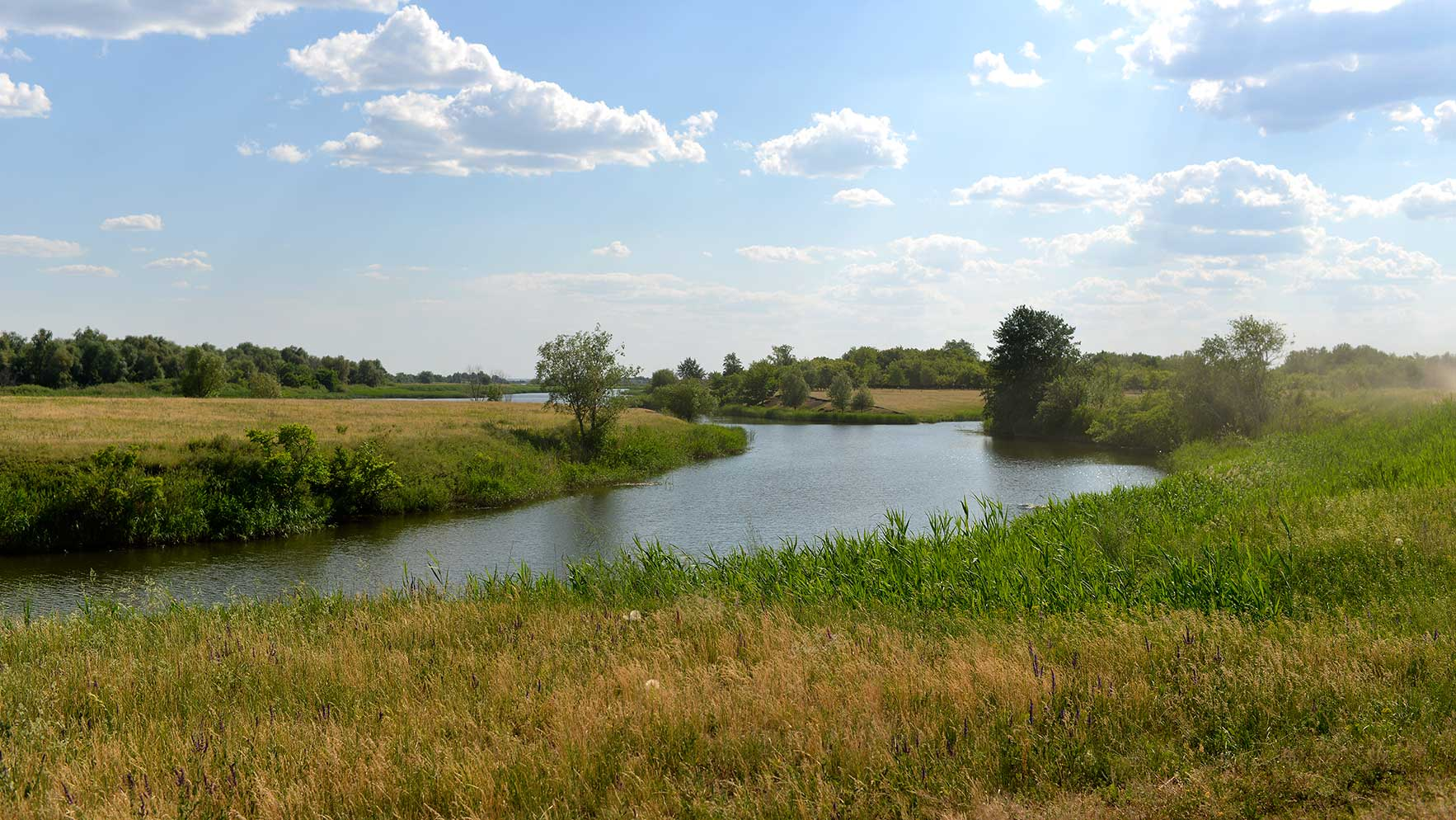 Река Тарлык