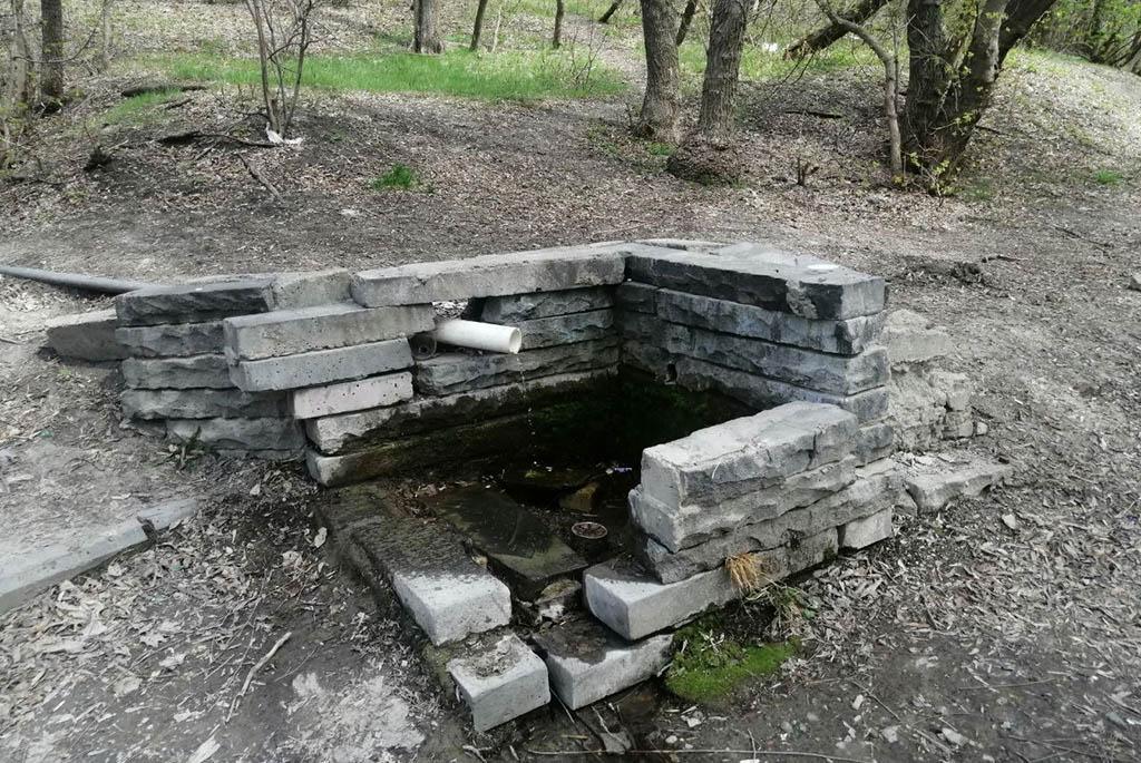 Родник у Свято-Алексиевского женского монастыря