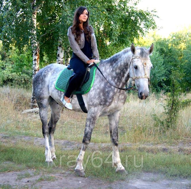 """Конные прогулки """"Отдых на краю"""""""