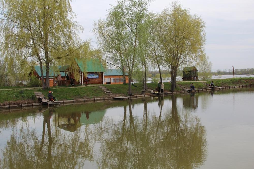 Получить права на лодку в московской области